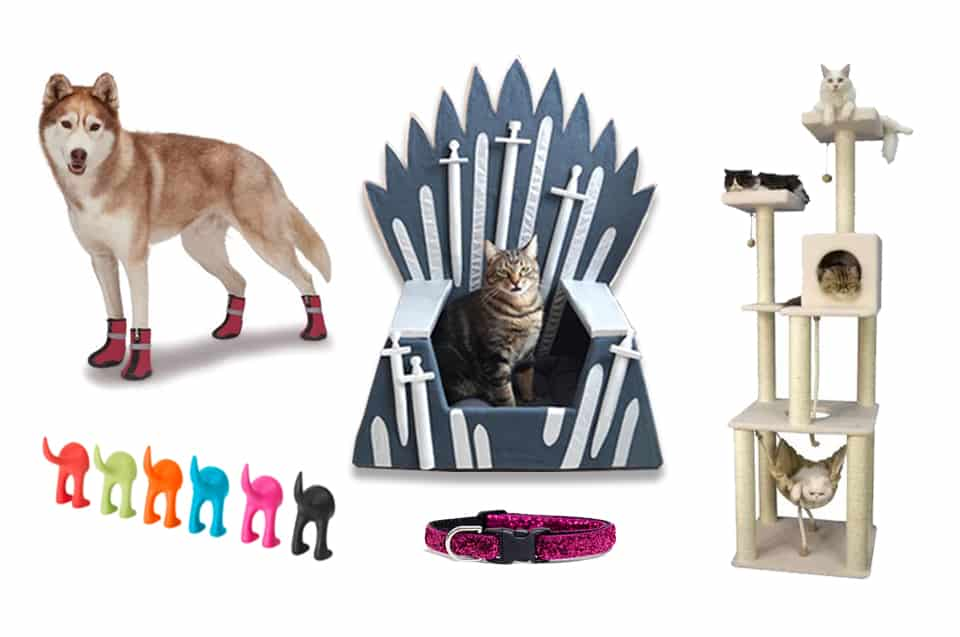 13 Fabulous Pet Accessories Your Cats and Dogs Can't Do Without