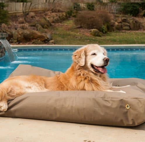 Happy golden retriever lying on waterproof rectangle dog bed.